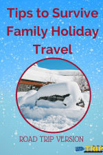 Survive a Holiday Road Trip-Kids Are A Trip