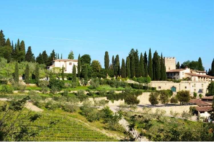 Castello-di-Verrazzano-Chianti-Vineyards-with-kids-Kids-Are-A-Trip