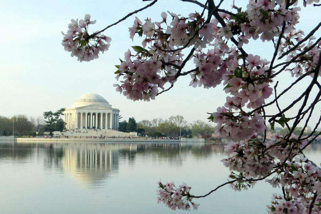 Visit Washington D.C. at spring break with kids -Kids Are A Trip