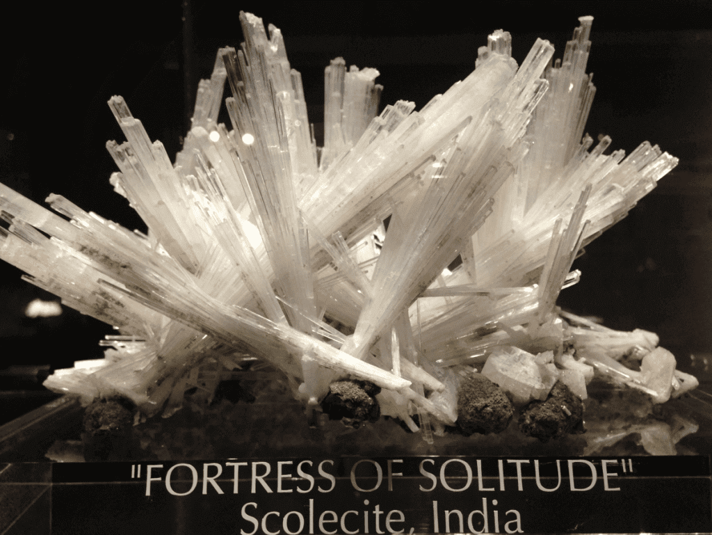 Fortress of Solitude-Kids Are A Trip