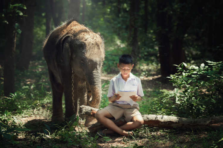 Child reading in jungle with elephant-Kids Are A Trip