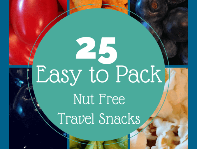 25 Easy to Pack Nut Free Travel Snacks