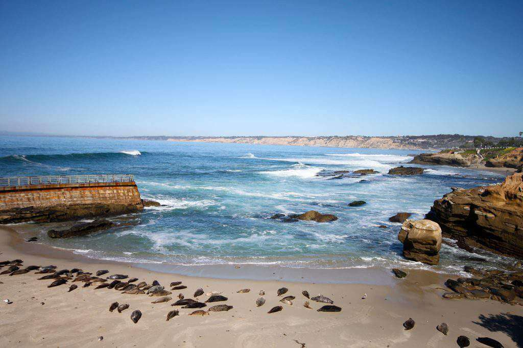 Warm Weather Destinations San Diego-Kids Are A Trip