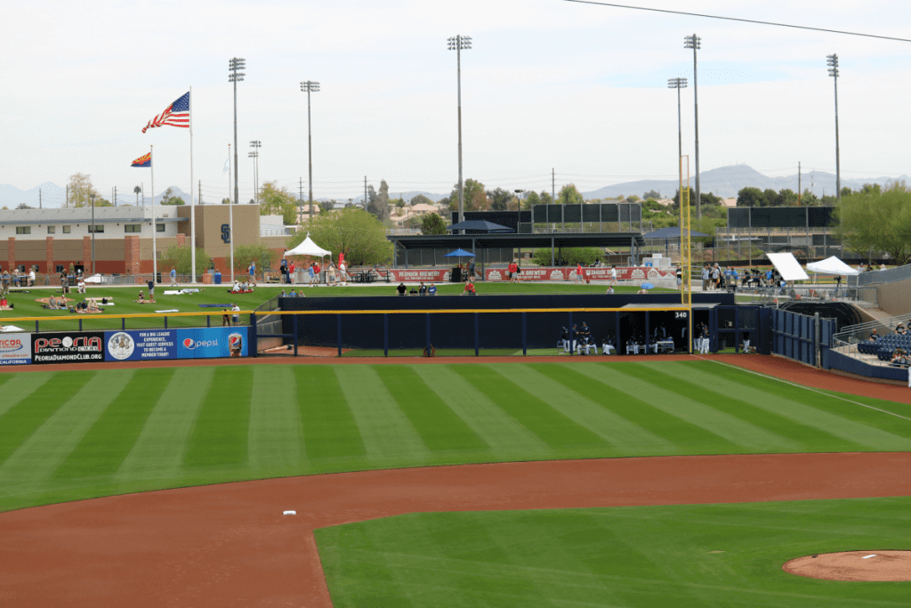 Family Friendly Things to Do on a Weekend in Phoenix Ball Game-Kids Are A Trip
