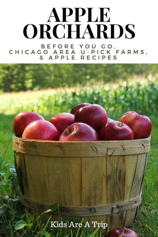 It's fall which means it is time for apples here in the Midwest. We're sharing our favorite apple orchard tips and recipes along with the best u pick apple orchards in Chicago. - Kids Are A Trip