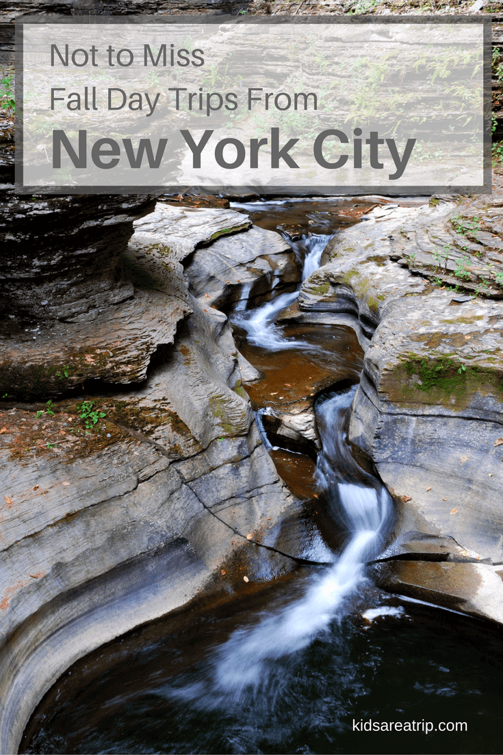 not-to-miss-fall-day-trips-from-new-york-city-kids are a trip
