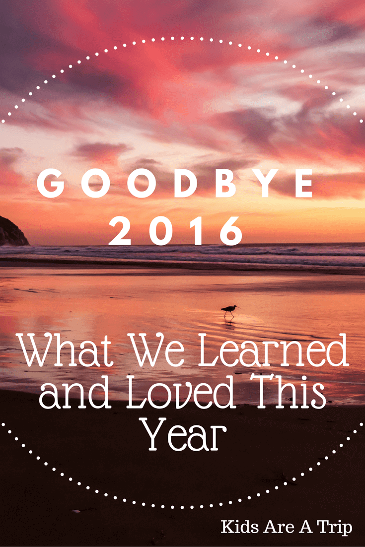 goodbye 2016-Kids Are A Trip