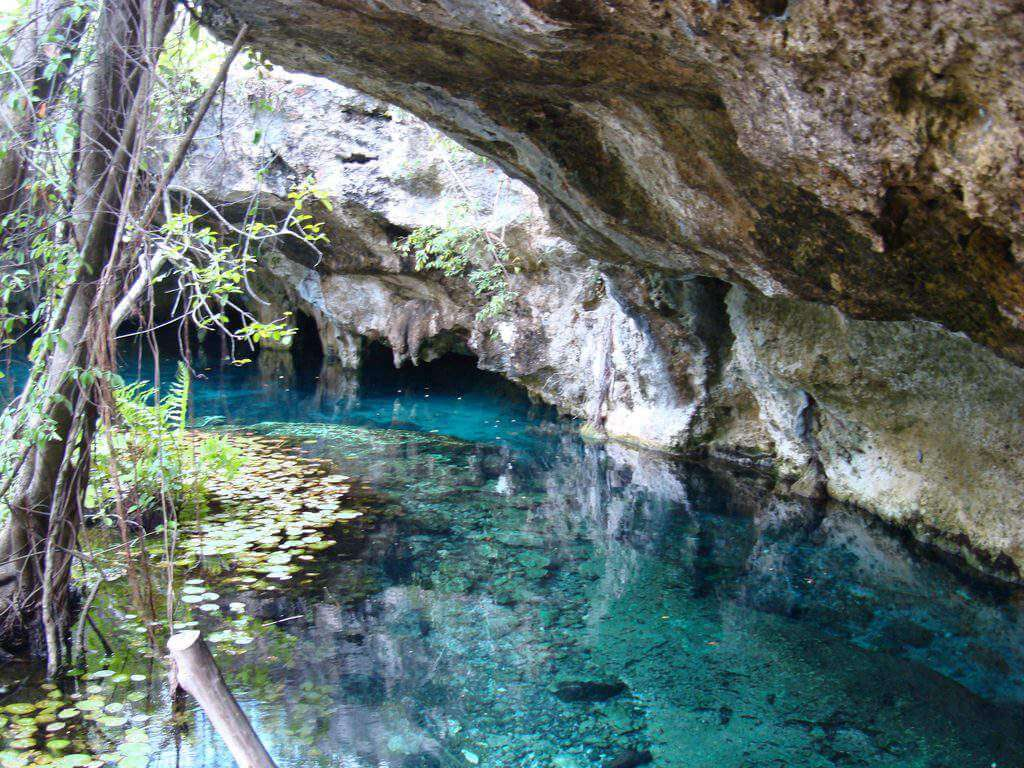 Best Things to Do with Kids in Cancun Visit Cenotes-Kids Are A Trip