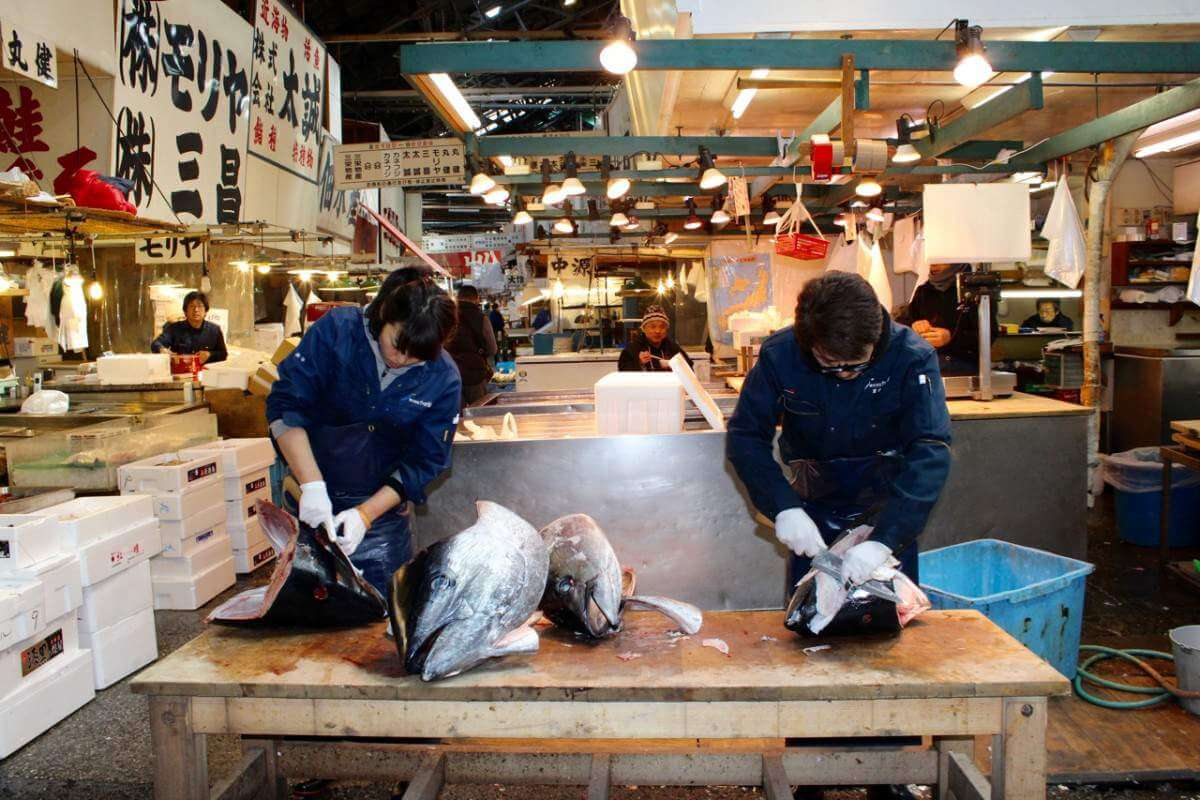 Things Not to Miss in Tokyo with Kids the Fish Market-Kids Are A Trip