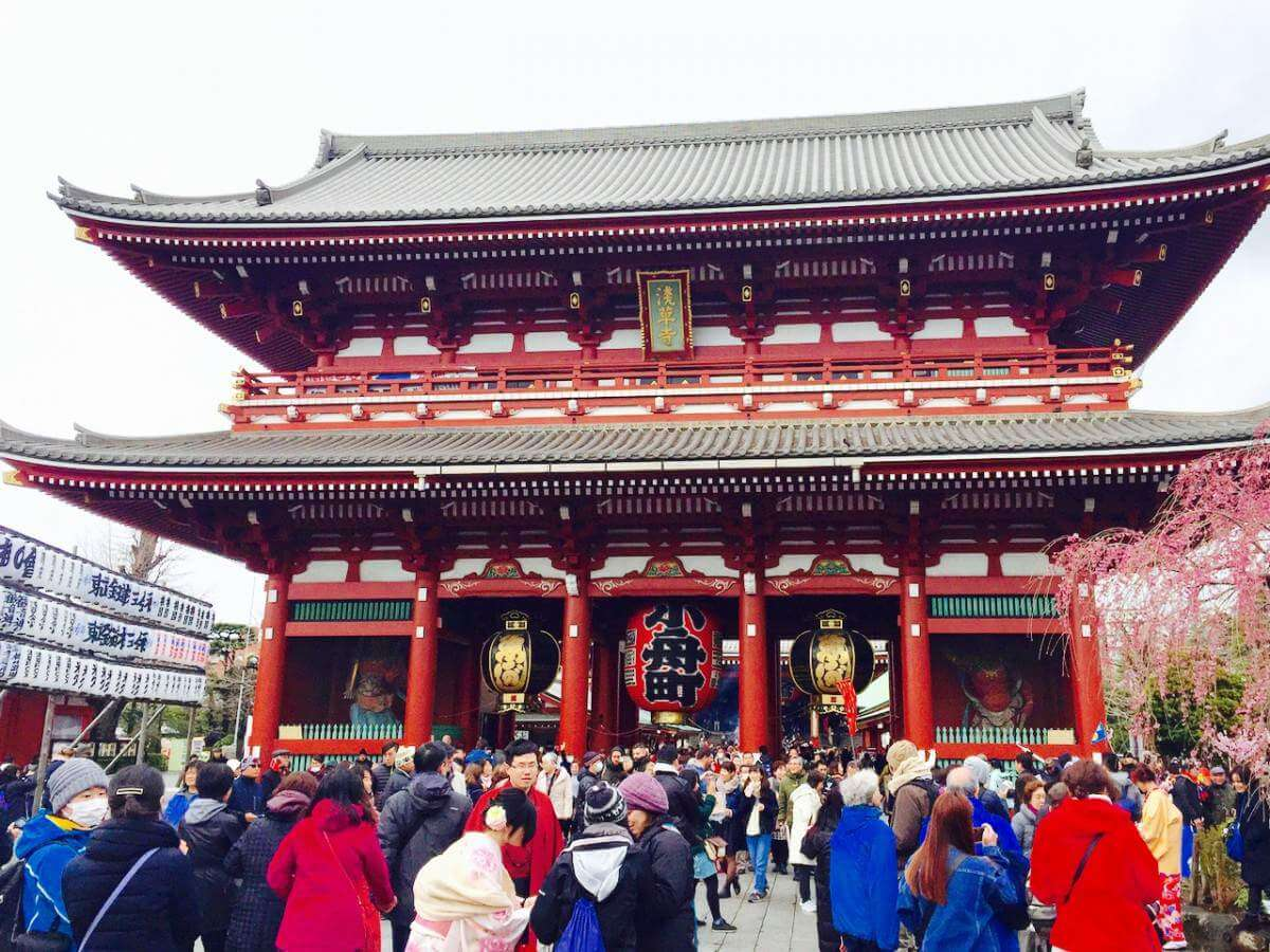 Top 7 Things Not to Miss in Tokyo with kids visiting a shrine-Kids Are A Trip
