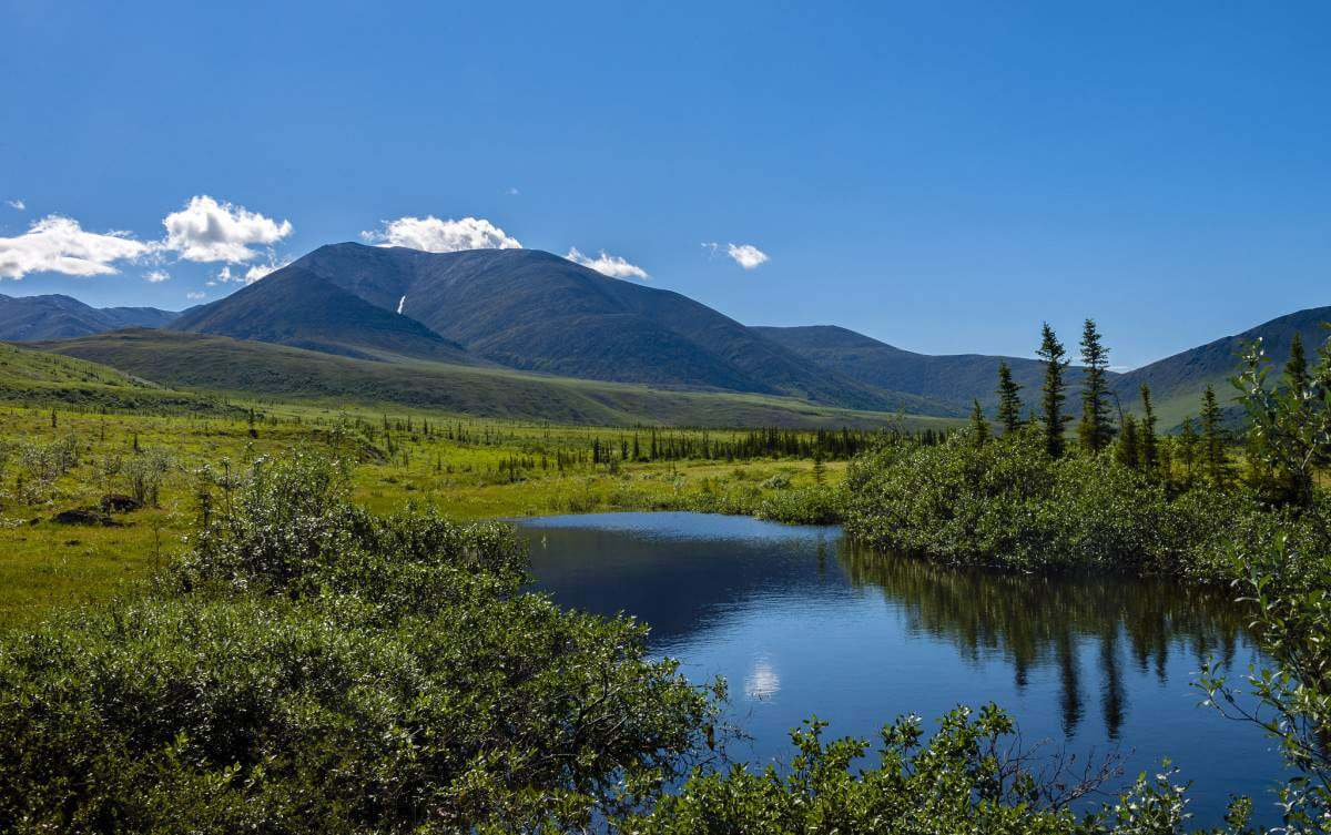 Canada National Parks to Explore Ivvavik National Park-Kids Are A Trip
