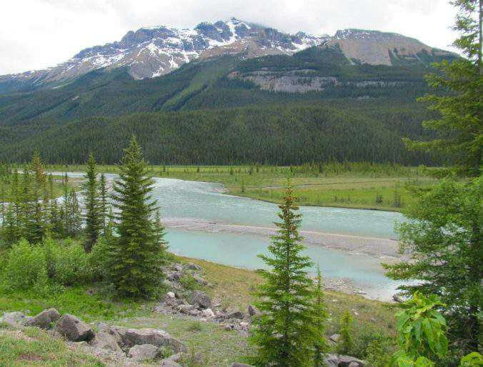Top 5 Family Friendly Things to Do in Jasper, Alberta, Canada