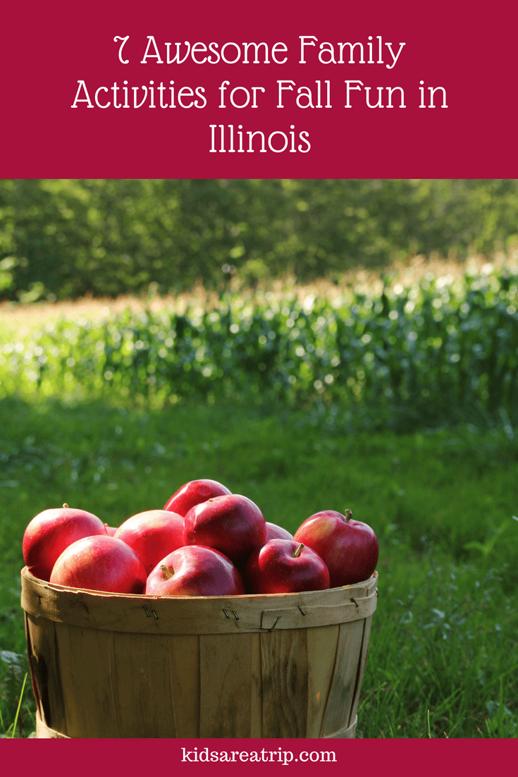 Fall is an awesome time to get out and explore Illinois. Come see the fantastic fun available all over the state! - Kids Are A Trip