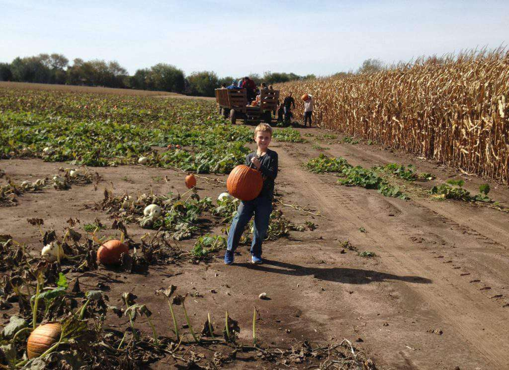 Family Fun Fall Activities in Chicago and Illinois Pumpkin Patch-Kids Are A Trip