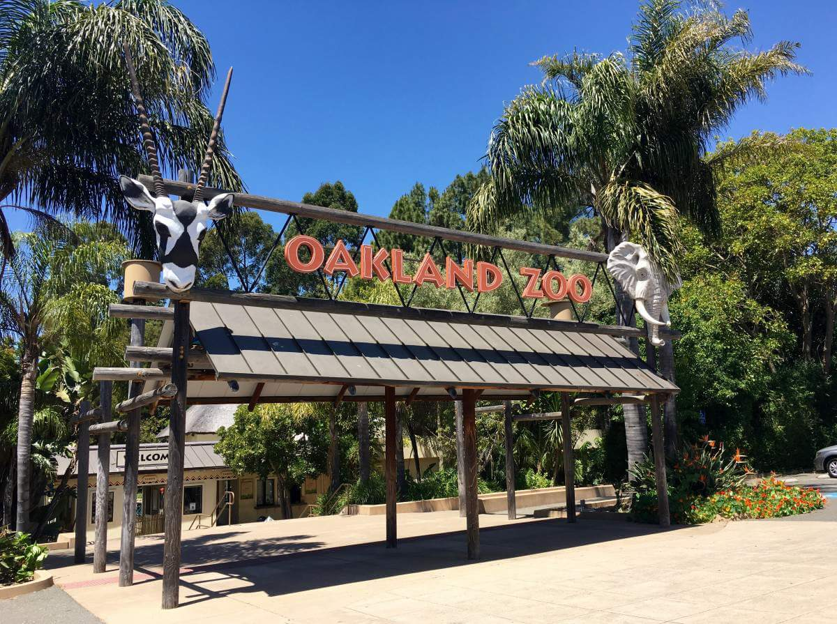 Family Friendly Things to Do in Oakland, California with Kids - Oakland Zoo-Kids Are A Trip
