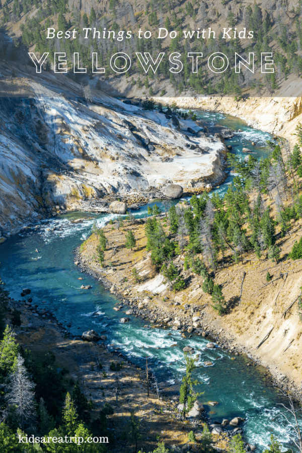 Best of Yellowstone National Park with Kids