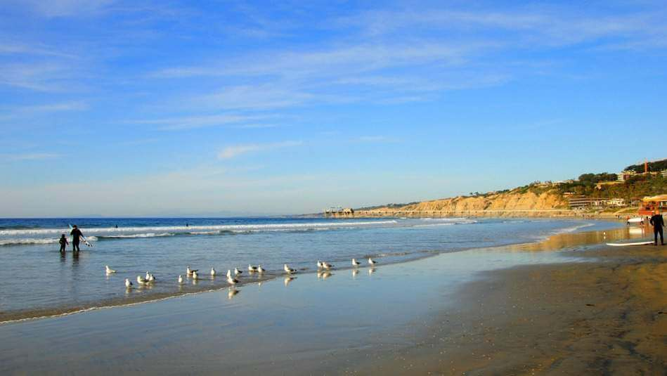 Best Family Beaches in San Diego La Jolla Shores-Kids Are A Trip
