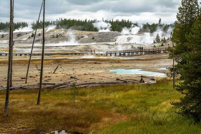 Norris Geyser Basin Yellowstone National Park with kids-Kids are A Trip