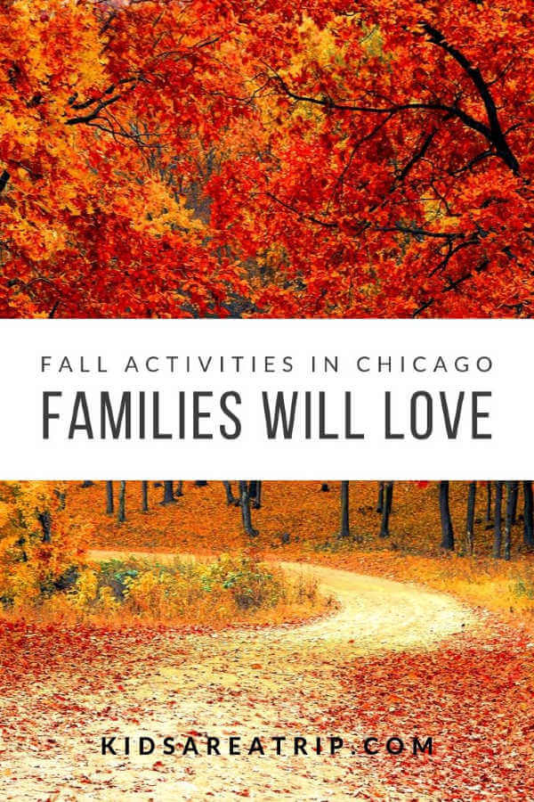 fun fall activities in chicago-kids are a trip