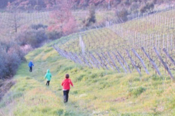 Running-Fields-in-Tuscany-Kids-are-a-Trip