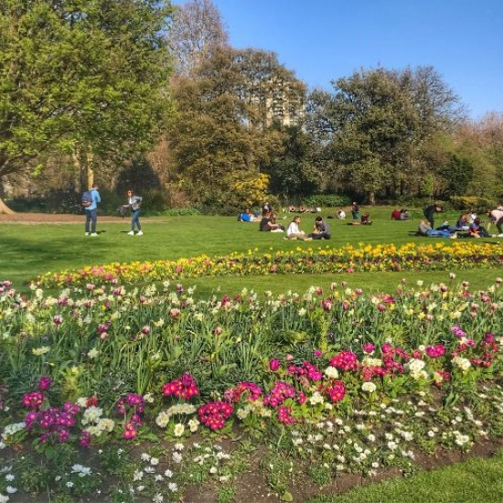 Best Things to Do in London with Teens