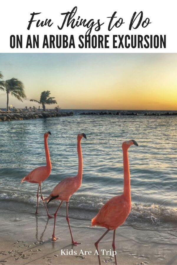Things to do in Aruba on a Cruise Port Day