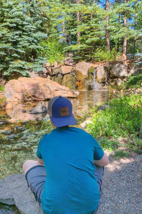 Betty Ford Gardens in Vail highest botanical garden-Kids Are A Trip