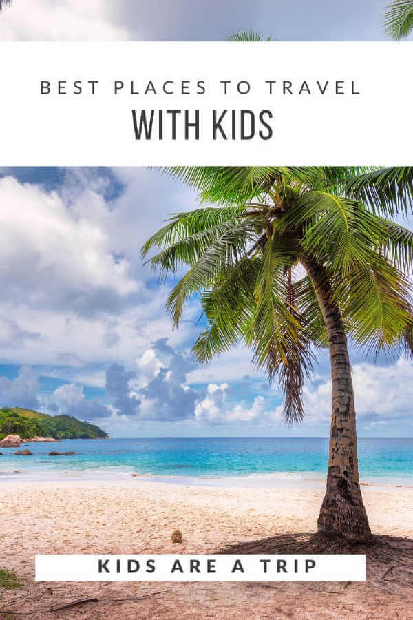 Bahamas beach with palm tree-Kids Are A Trip