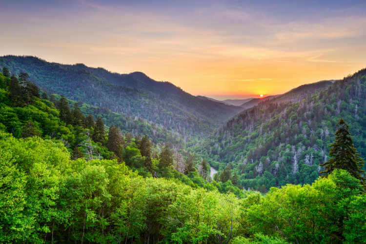 Great Smoky Mountains National Park-Kids Are A Trip