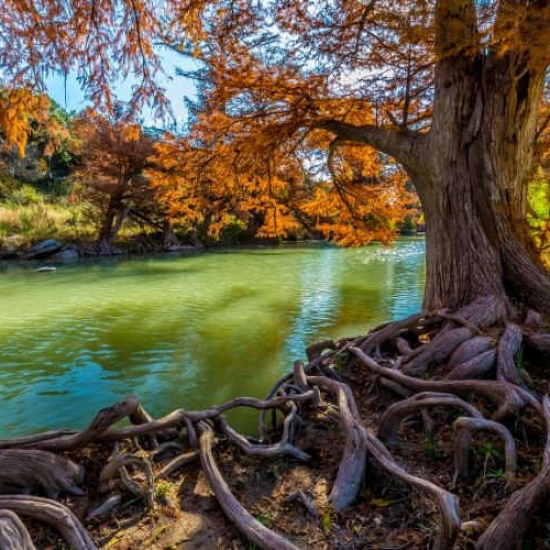 Amazing State Parks in Texas You Don't Want to Miss