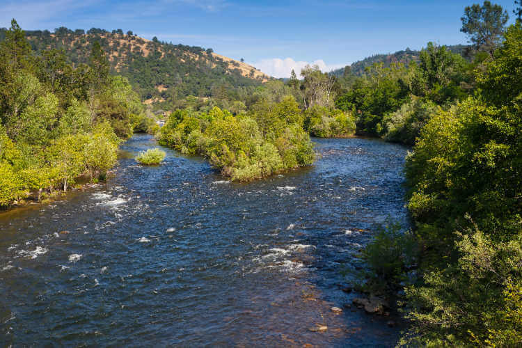 American River California panning for Gold