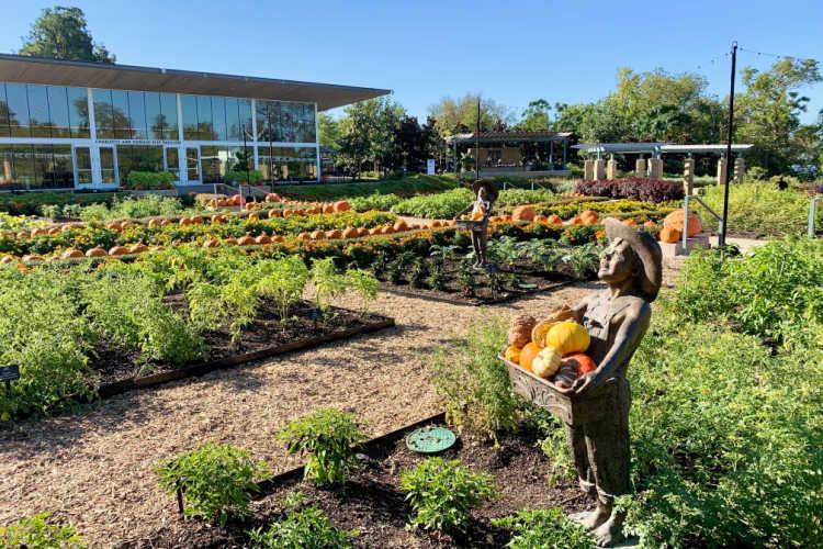 Dallas Arboretum-Kids Are A Trip